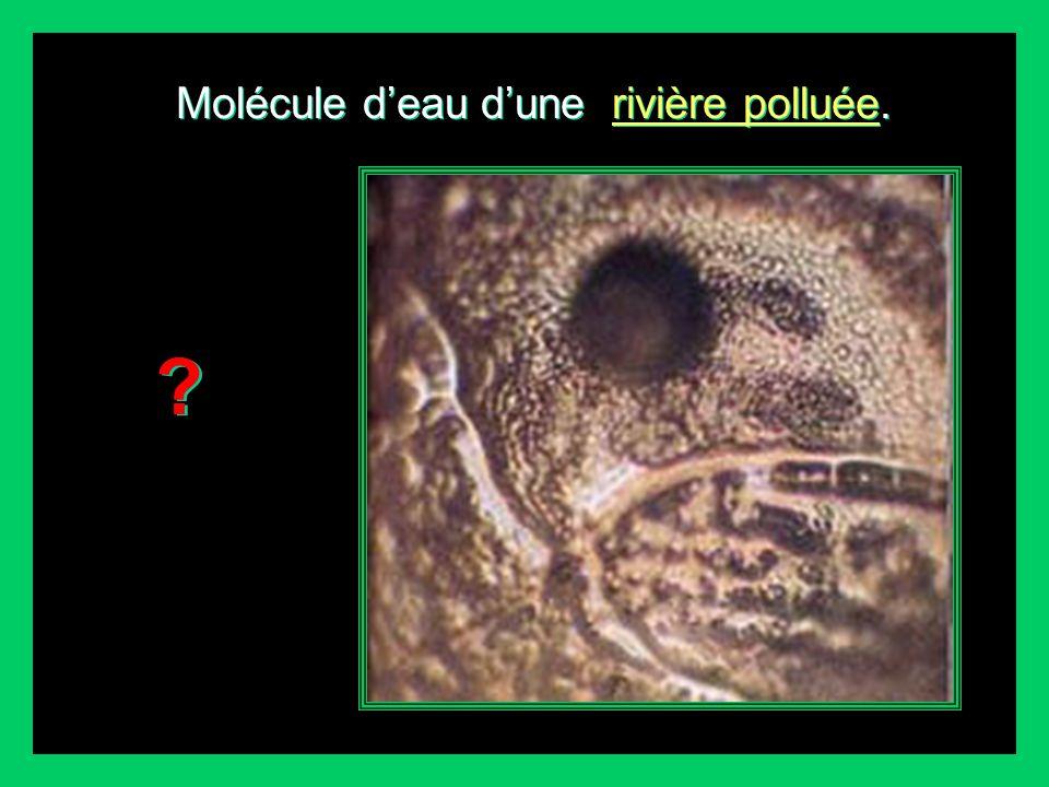 Molécule deau au moment de sa naissance, à la sortie de sa source. Molécule deau au moment de sa naissance, naissance, à la sortie de sa source. Quoi