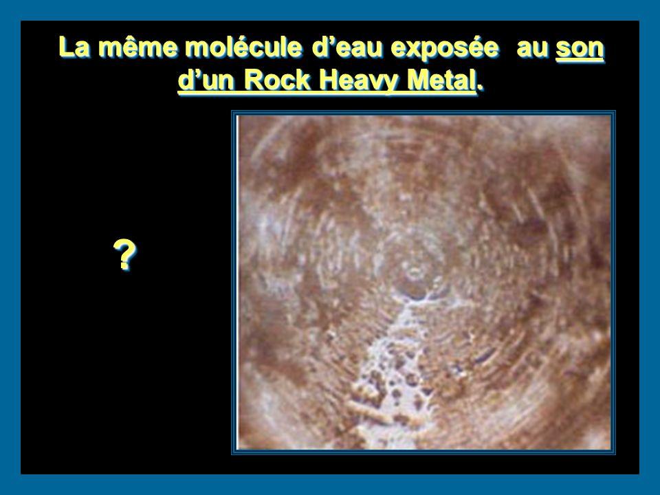 La même molécule deau exposée au son dun Rock Heavy Metal.