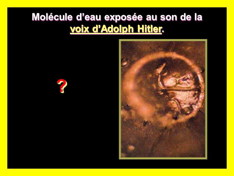Molécule deau exposée au son de la voix dAdolph Hitler.