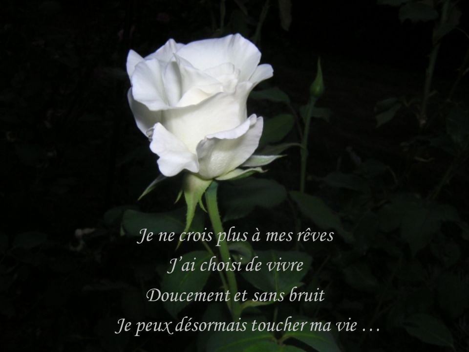Je ne perçois plus ma vie Comme un jour de pluie Devant mes souffrances Jai tiré ma révérence …