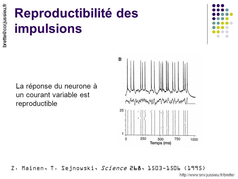http://www.snv.jussieu.fr/brette/ Reproductibilité des impulsions Z. Mainen, T. Sejnowski, Science 268, 1503-1506 (1995) La réponse du neurone à un co