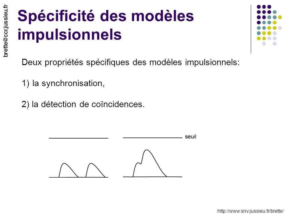 http://www.snv.jussieu.fr/brette/ Spécificité des modèles impulsionnels Deux propriétés spécifiques des modèles impulsionnels: 1)la synchronisation, 2