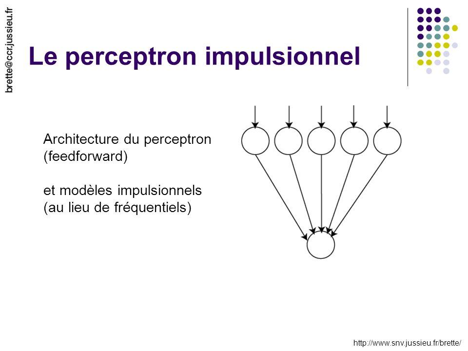 http://www.snv.jussieu.fr/brette/ Le perceptron impulsionnel Architecture du perceptron (feedforward) et modèles impulsionnels (au lieu de fréquentiel