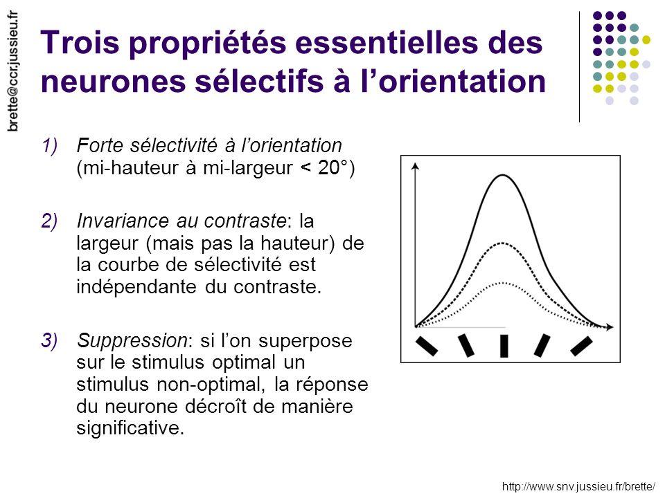 http://www.snv.jussieu.fr/brette/ Trois propriétés essentielles des neurones sélectifs à lorientation 1)Forte sélectivité à lorientation (mi-hauteur à