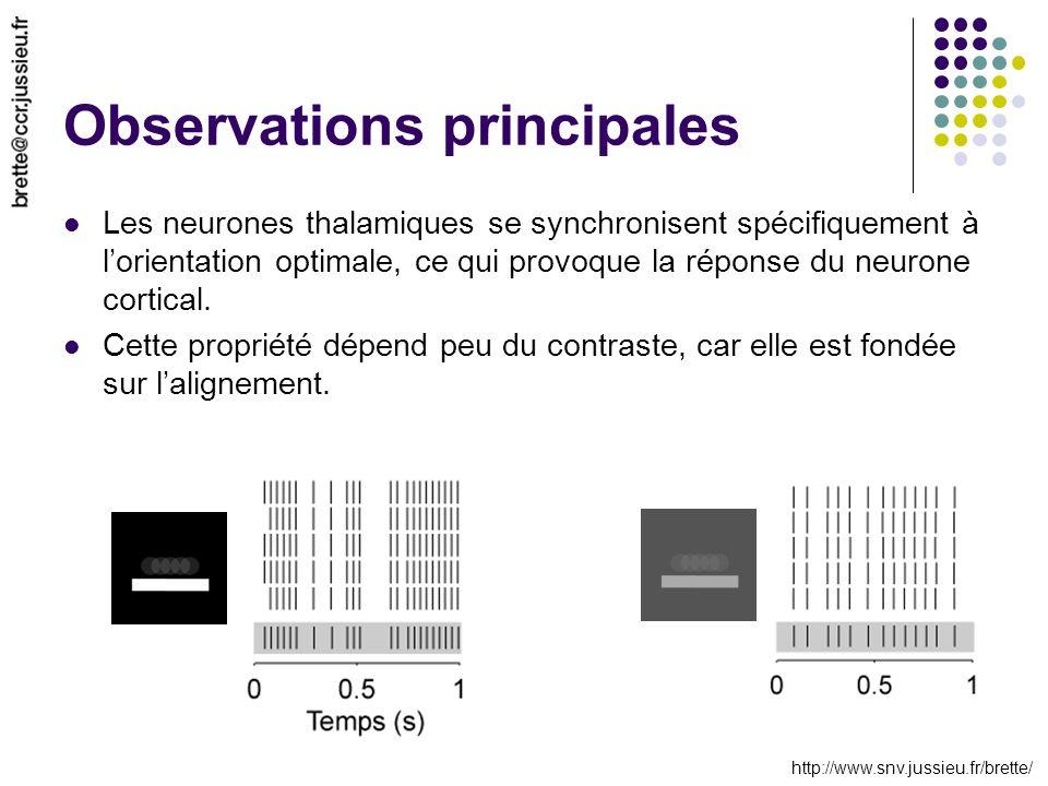 http://www.snv.jussieu.fr/brette/ Observations principales Les neurones thalamiques se synchronisent spécifiquement à lorientation optimale, ce qui pr