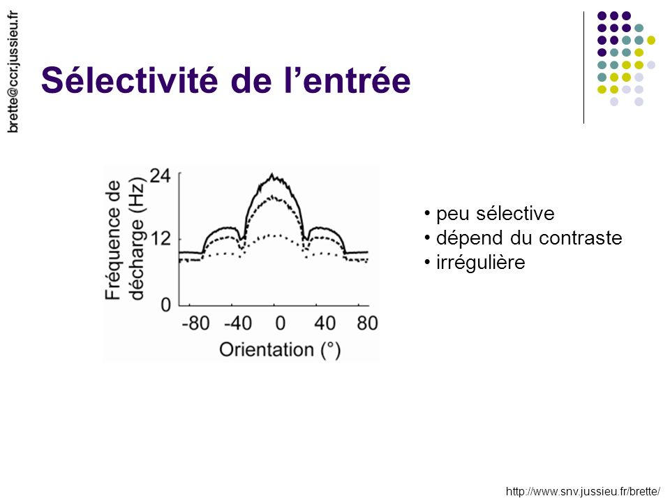 http://www.snv.jussieu.fr/brette/ Sélectivité de lentrée peu sélective dépend du contraste irrégulière