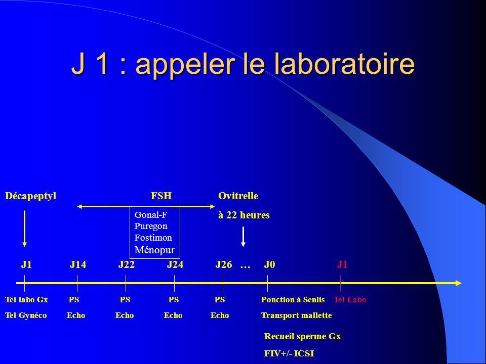J 1 : appeler le laboratoire DécapeptylFSH Ovitrelle à 22 heures Tel labo Gx PS PS PS PS Ponction à Senlis Tel Labo Tel Gynéco Echo Echo Echo Echo Tra