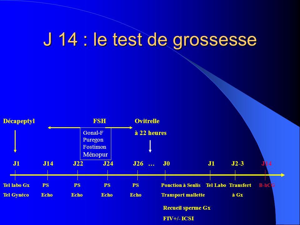 J 14 : le test de grossesse DécapeptylFSH Ovitrelle à 22 heures Tel labo Gx PS PS PS PS Ponction à Senlis Tel Labo Transfert B-hCG Tel Gynéco Echo Ech