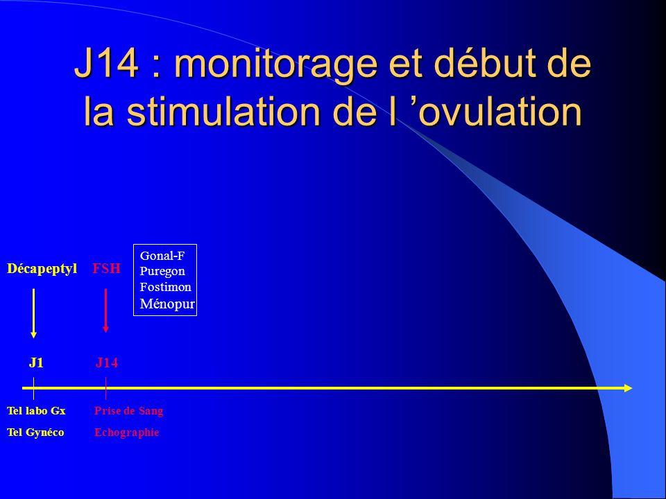 J14 : monitorage et début de la stimulation de l ovulation Décapeptyl FSH Tel labo Gx Prise de Sang Tel Gynéco Echographie Gonal-F Puregon Fostimon Mé
