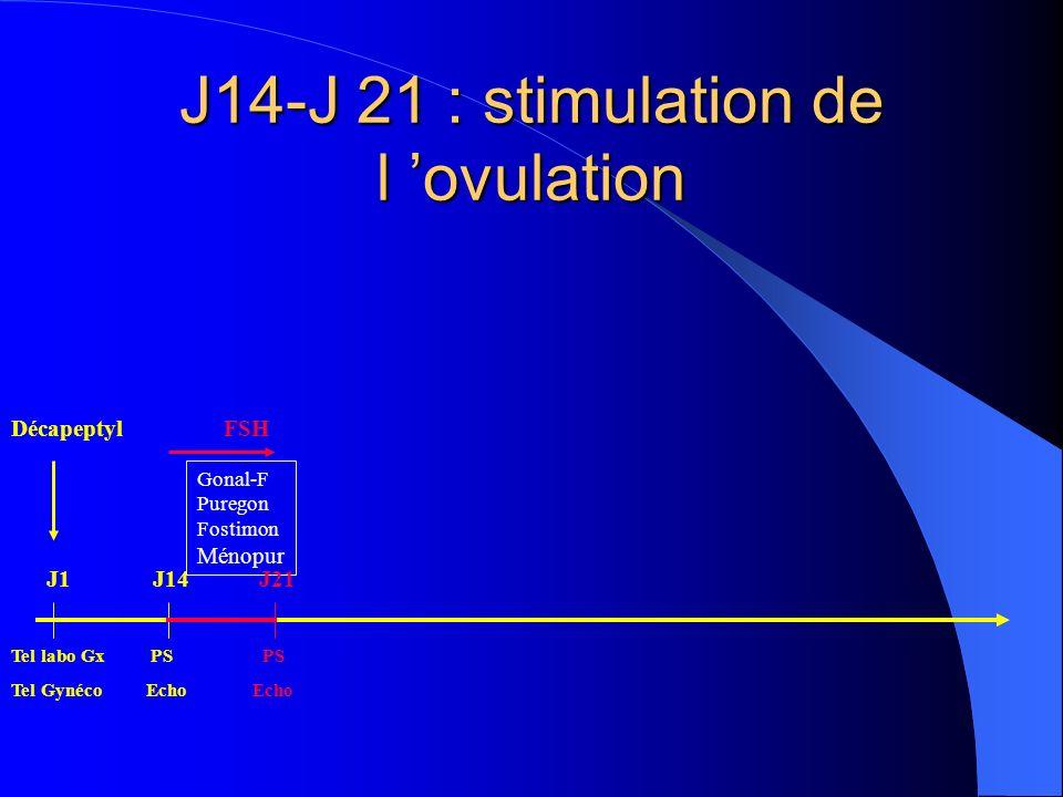 J14-J 21 : stimulation de l ovulation DécapeptylFSH Tel labo Gx PS PS Tel Gynéco Echo Echo Gonal-F Puregon Fostimon Ménopur J1J14J21