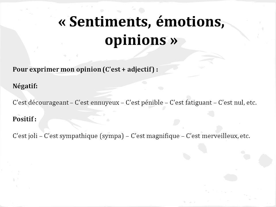 « Sentiments, émotions, opinions » Pour exprimer mon opinion (Cest + adjectif) : Négatif: Cest décourageant – Cest ennuyeux – Cest pénible – Cest fati
