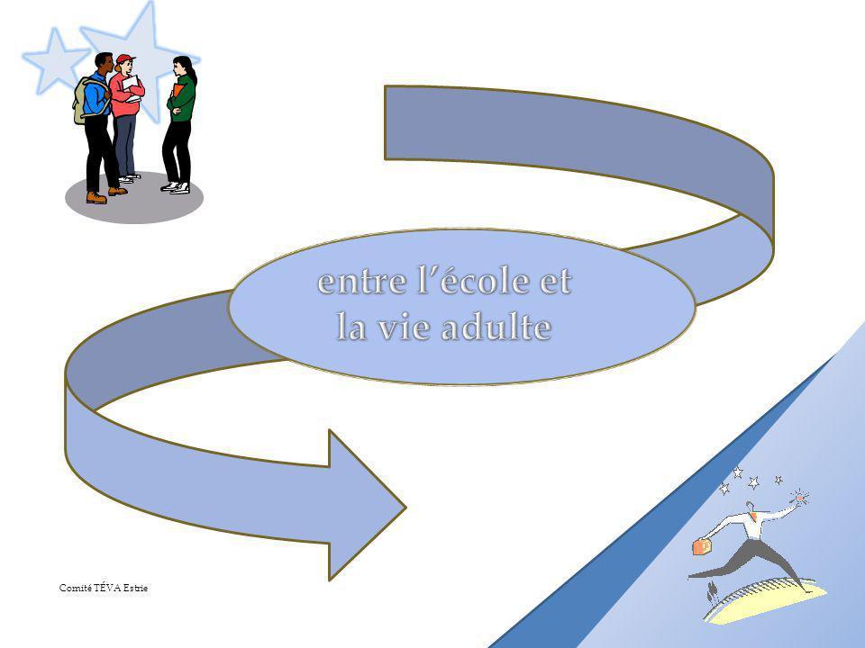 Mission du CRITPH Préoccupations à légard de la transition socioprofessionnelle des jeunes handicapés Fin des années 90, formation dun sous-comité Développement dune démarche et doutils daccompagnement Développement dun parcours demployabilité (2007) Partenariat interministériel Définition dun modèle de transition socioprofessionnelle (2010)