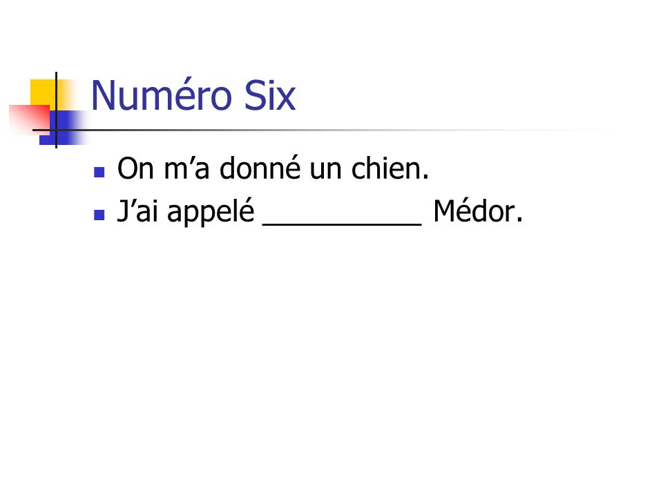 Numéro Six On ma donné un chien. Jai appelé __________ Médor.