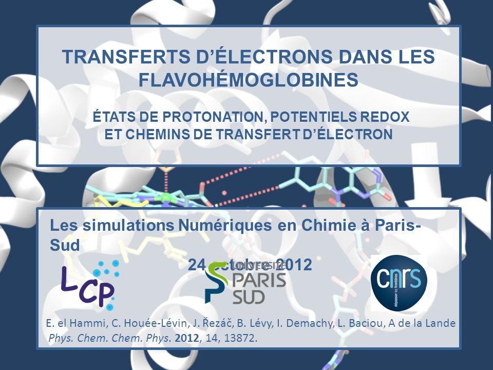 TRANSFERTS DÉLECTRONS DANS LES FLAVOHÉMOGLOBINES ÉTATS DE PROTONATION, POTENTIELS REDOX ET CHEMINS DE TRANSFERT DÉLECTRON Les simulations Numériques e