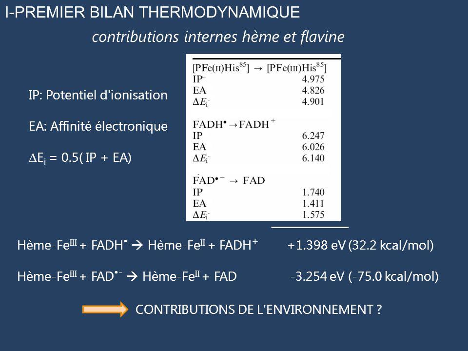 I-PREMIER BILAN THERMODYNAMIQUE IP: Potentiel d'ionisation EA: Affinité électronique E i = 0.5( IP + EA) contributions internes hème et flavine Hème-F