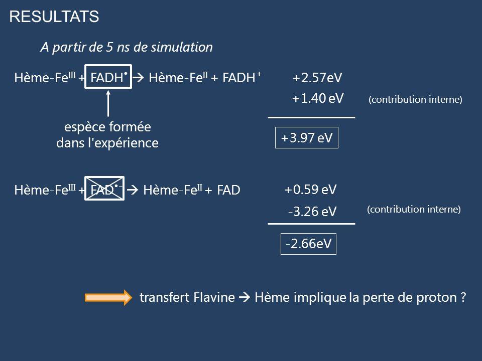 RESULTATS Hème-Fe III + FADH Hème-Fe II + FADH + Hème-Fe III + FAD - Hème-Fe II + FAD +2.57eV +0.59 eV A partir de 5 ns de simulation +1.40 eV -3.26 e