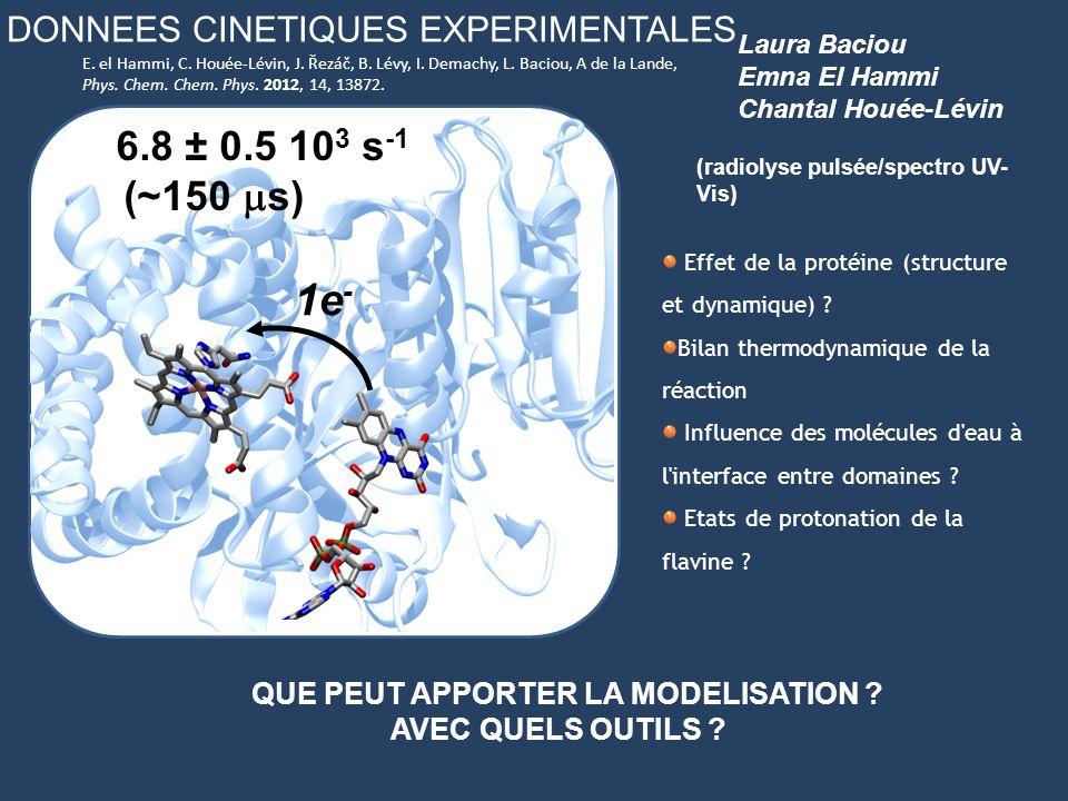 DONNEES CINETIQUES EXPERIMENTALES Effet de la protéine (structure et dynamique) ? Bilan thermodynamique de la réaction Influence des molécules d'eau à