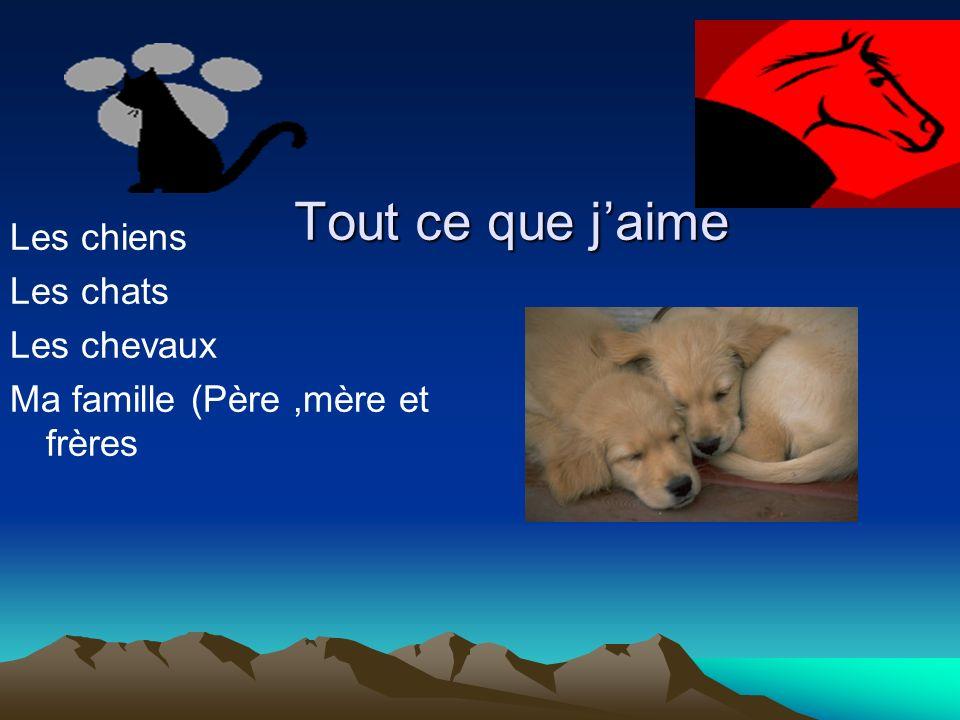 Noa Jaime les chiens.Ma couleur préférée est le mauve.
