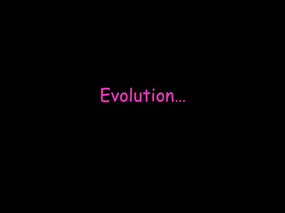 Evolution…