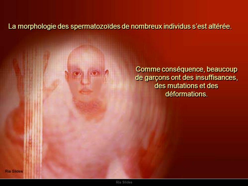Ria Slides La morphologie des spermatozoïdes de nombreux individus sest altérée.