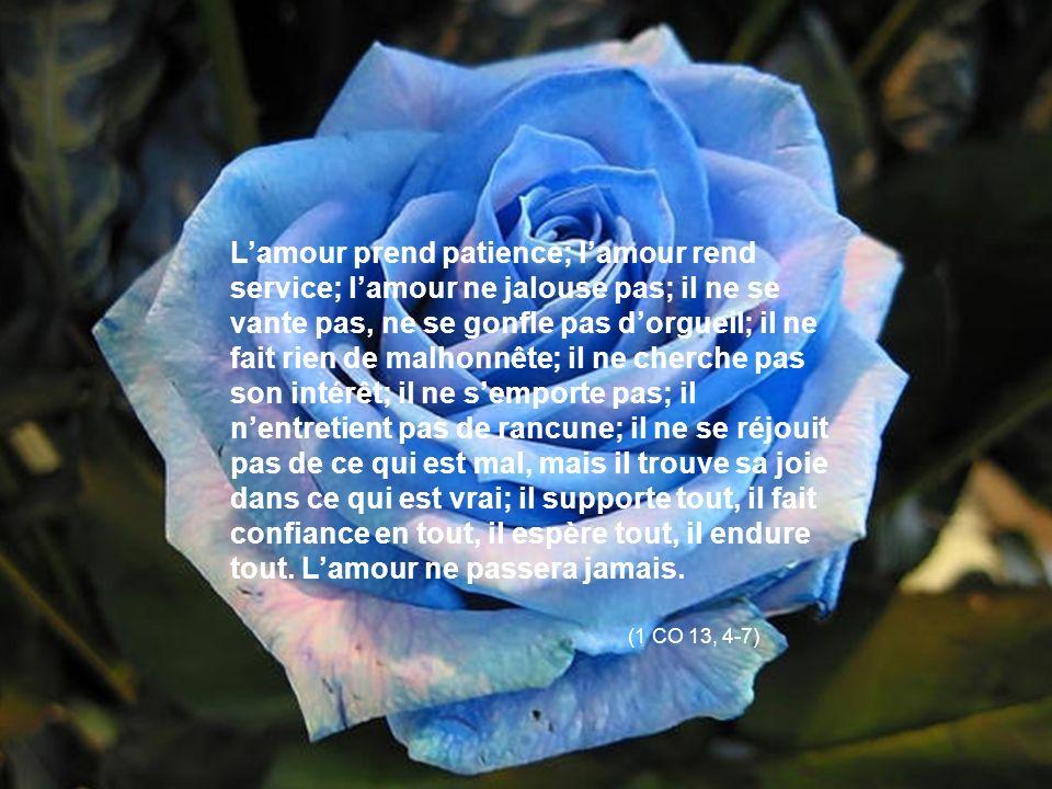 Lamour prend patience; lamour rend service; lamour ne jalouse pas; il ne se vante pas, ne se gonfle pas dorgueil; il ne fait rien de malhonnête; il ne