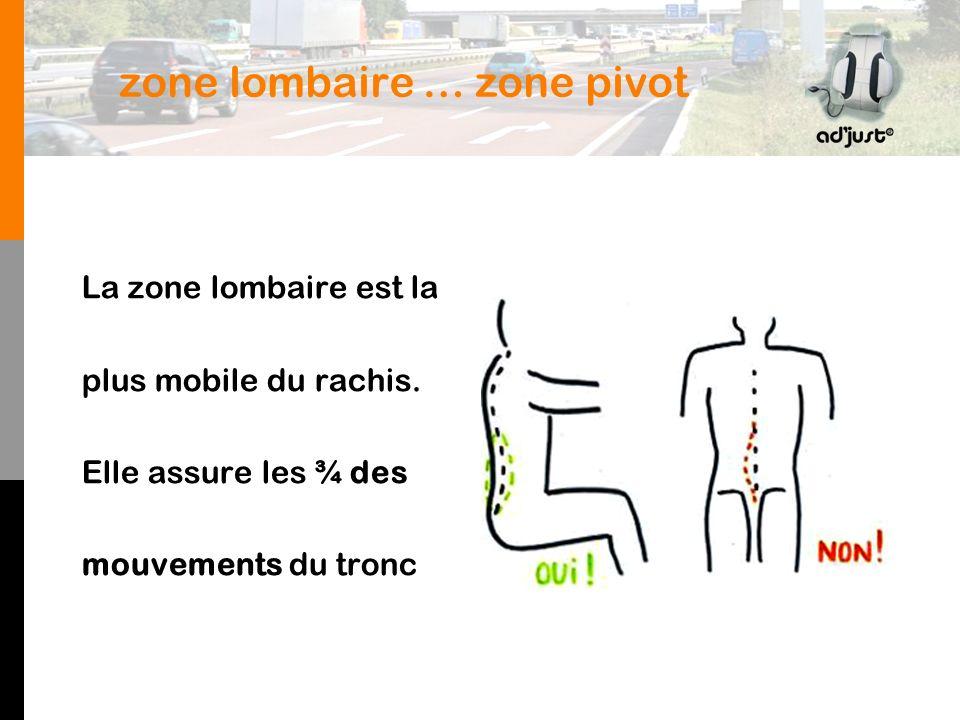 zone lombaire … zone pivot La zone lombaire est la plus mobile du rachis.