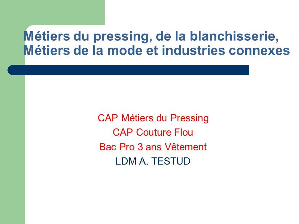 Métiers de lhygiène et de lenvironnement Bac Pro Hygiène Environnement LP A. CAMUS