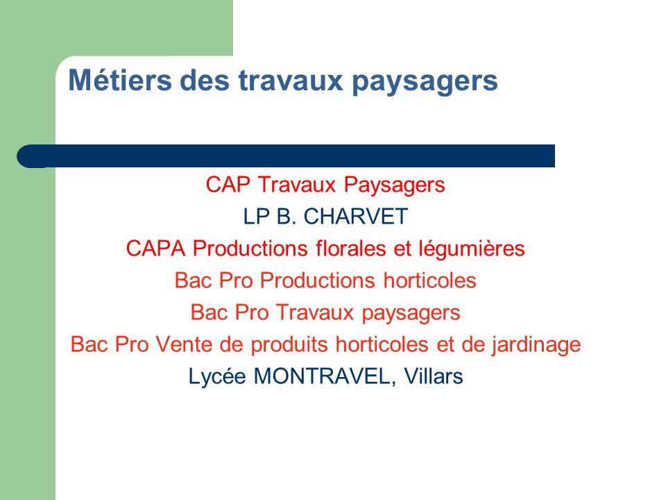 Métiers de larmurerie Deux diplômes accessibles après un CAP,un BEP ou un Bac Pro des métiers du Bois ou de la Mécanique ou encore un Bac STI Micromécanique : CAP Armurerie en 1 an LP B.