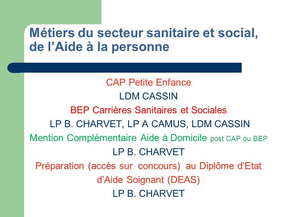 Métiers de lesthétique, la cosmétique, la parfumerie CAP Coiffure LP B.