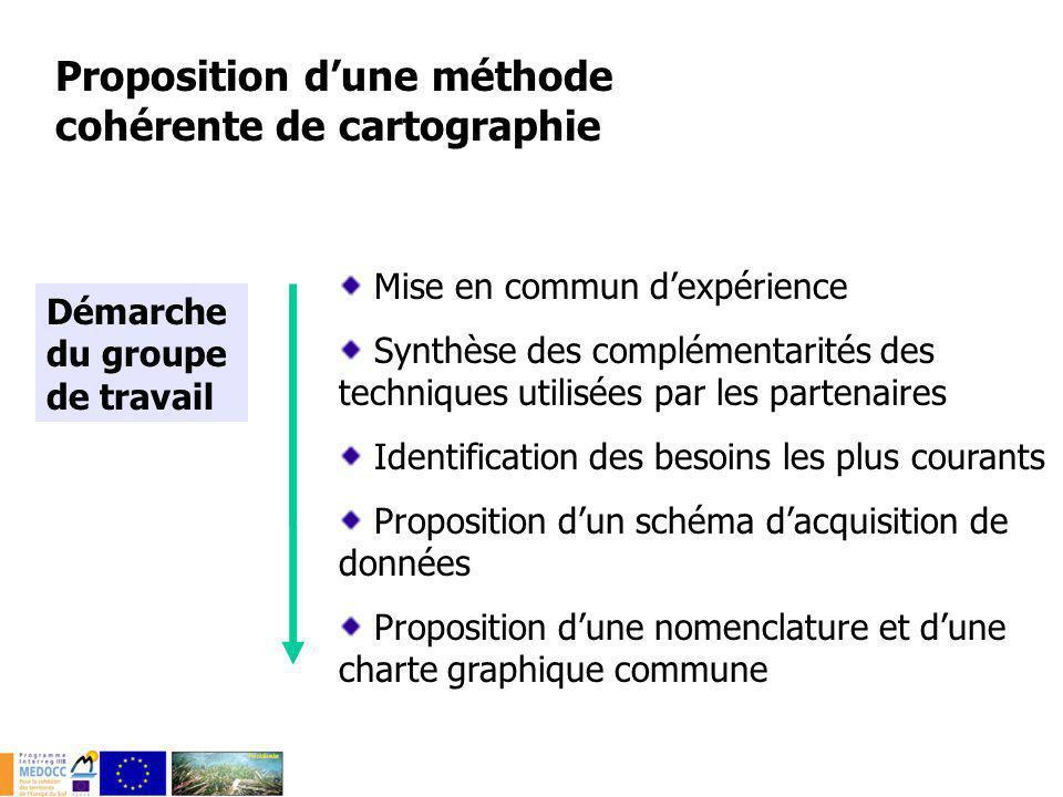 Mise en commun dexpérience Synthèse des complémentarités des techniques utilisées par les partenaires Identification des besoins les plus courants Pro