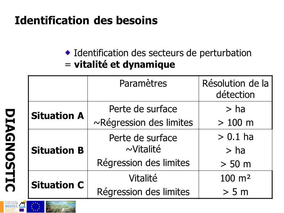 Identification des besoins Identification des secteurs de perturbation = vitalité et dynamique DIAGNOSTIC ParamètresRésolution de la détection Situati