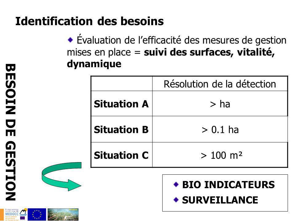 Identification des besoins Évaluation de lefficacité des mesures de gestion mises en place = suivi des surfaces, vitalité, dynamique BESOIN DE GESTION