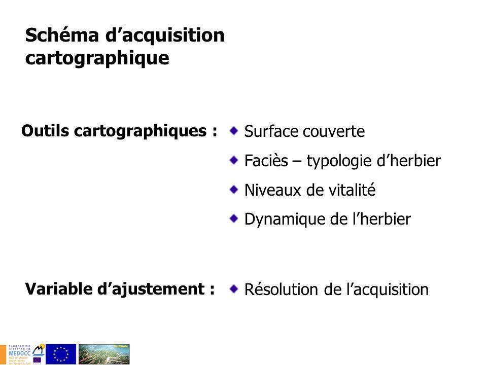 Schéma dacquisition cartographique Outils cartographiques : Surface couverte Faciès – typologie dherbier Niveaux de vitalité Dynamique de lherbier Var