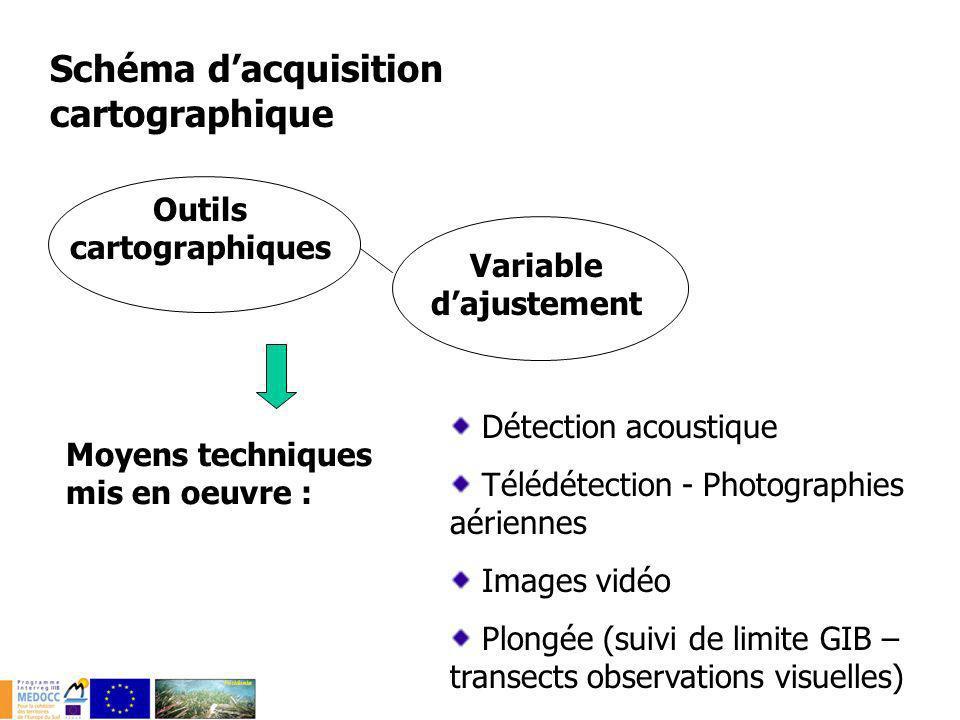 Schéma dacquisition cartographique Moyens techniques mis en oeuvre : Détection acoustique Télédétection - Photographies aériennes Images vidéo Plongée