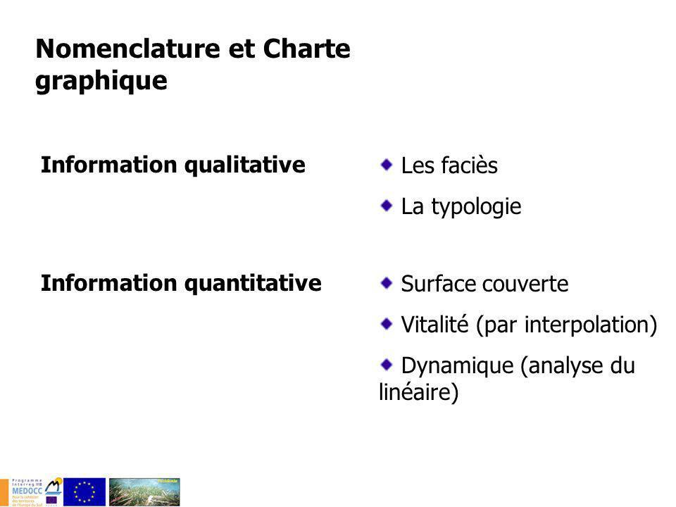 Nomenclature et Charte graphique Les faciès La typologie Information qualitative Information quantitative Surface couverte Vitalité (par interpolation