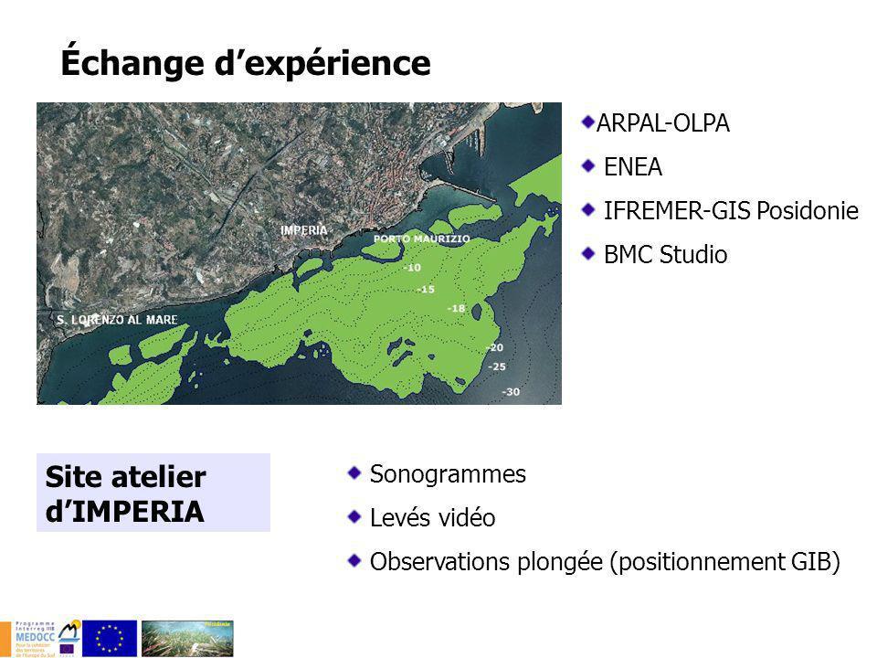 Site atelier dIMPERIA Sonogrammes Levés vidéo Observations plongée (positionnement GIB) Échange dexpérience ARPAL-OLPA ENEA IFREMER-GIS Posidonie BMC