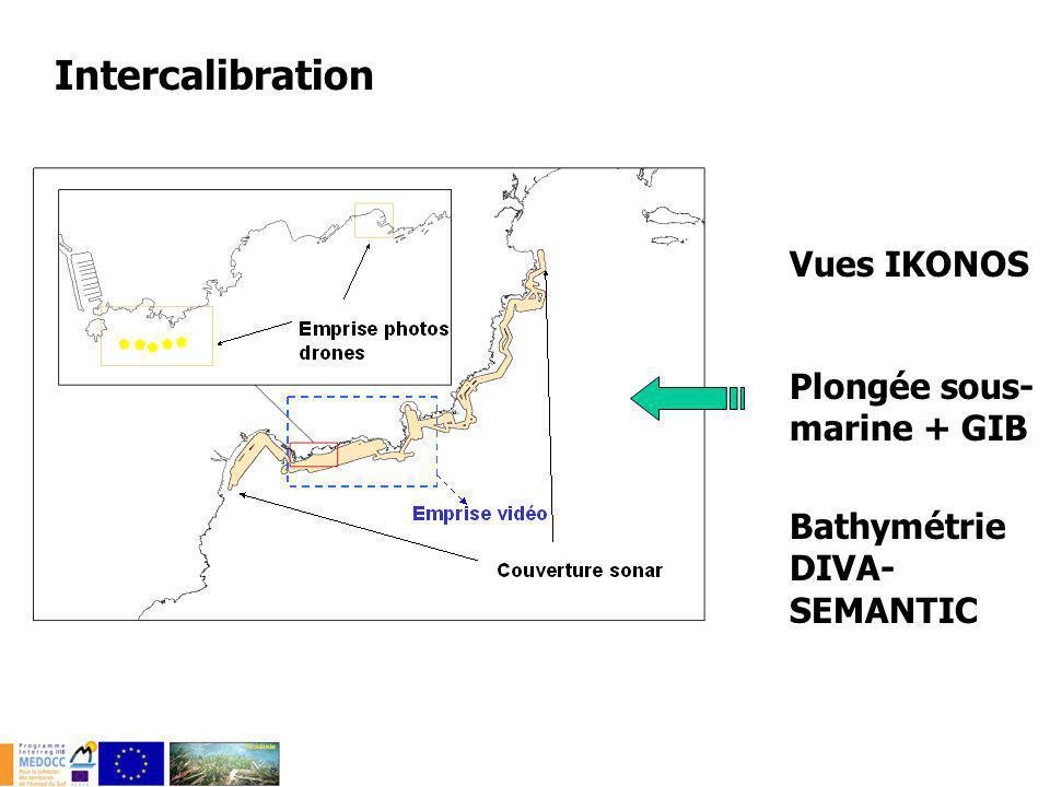 Complémentarité dans la mise en oeuvre Surface couverteprofondeur Détection acoustique 10 km²/j10-150 m Télédétection-imagerie aérienne 10-100 km²0-15 m Imagerie vidéo 8-10 km/j5-80 m Observations plongée sous-marine 2-3 km/j0-40 m Intercalibration