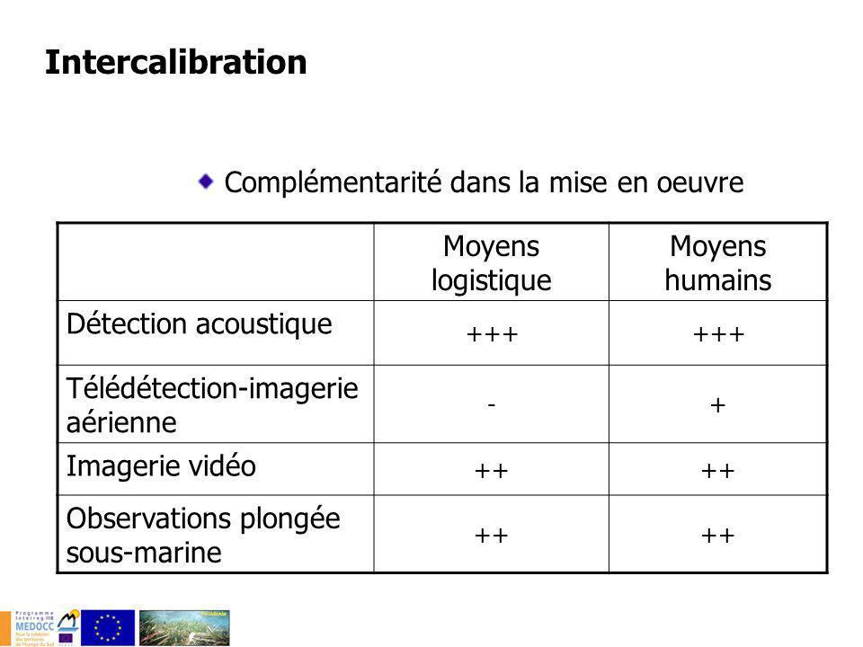 Complémentarité dans la restitution ÉchelleRésolution de la détection Détection acoustique Locale à régionale< 10 m Télédétection-imagerie aérienne Locale à régionale< 5 m Imagerie vidéo Locale< 1 m Observations plongée sous-marine Locale< 1 m Intercalibration