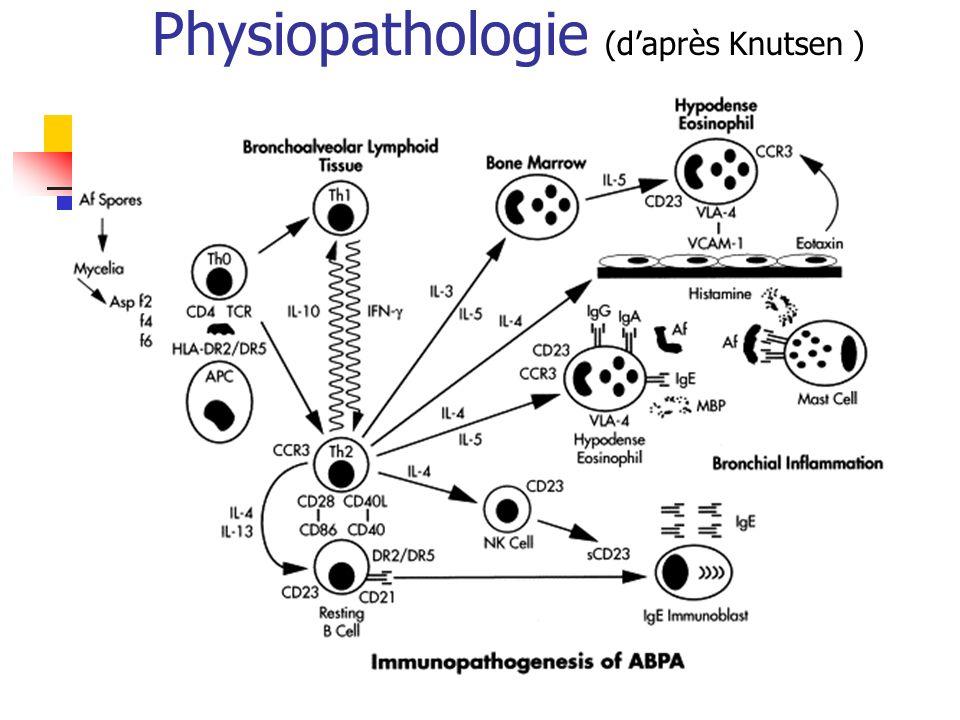 Physiopathologie (daprès Knutsen )