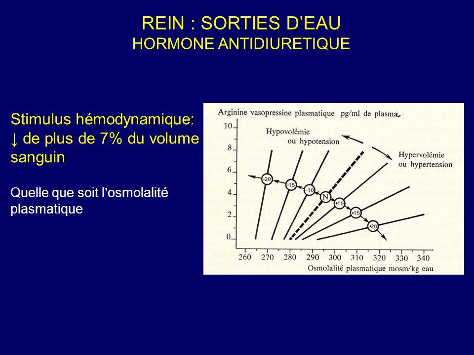 Stimulus hémodynamique: de plus de 7% du volume sanguin Quelle que soit losmolalité plasmatique REIN : SORTIES DEAU HORMONE ANTIDIURETIQUE