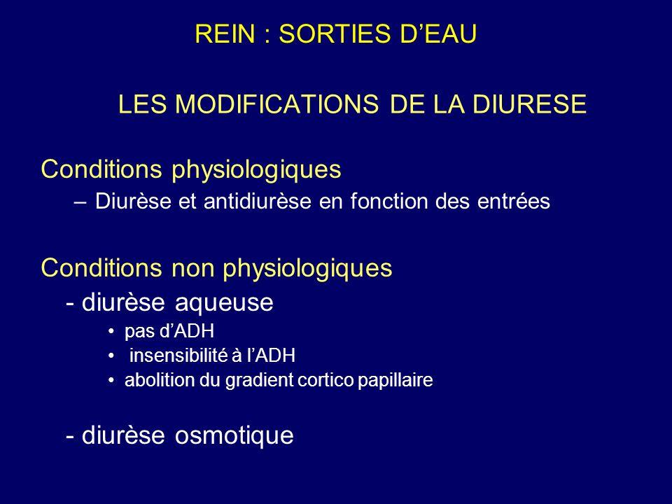 LES MODIFICATIONS DE LA DIURESE Conditions physiologiques –Diurèse et antidiurèse en fonction des entrées Conditions non physiologiques - diurèse aque