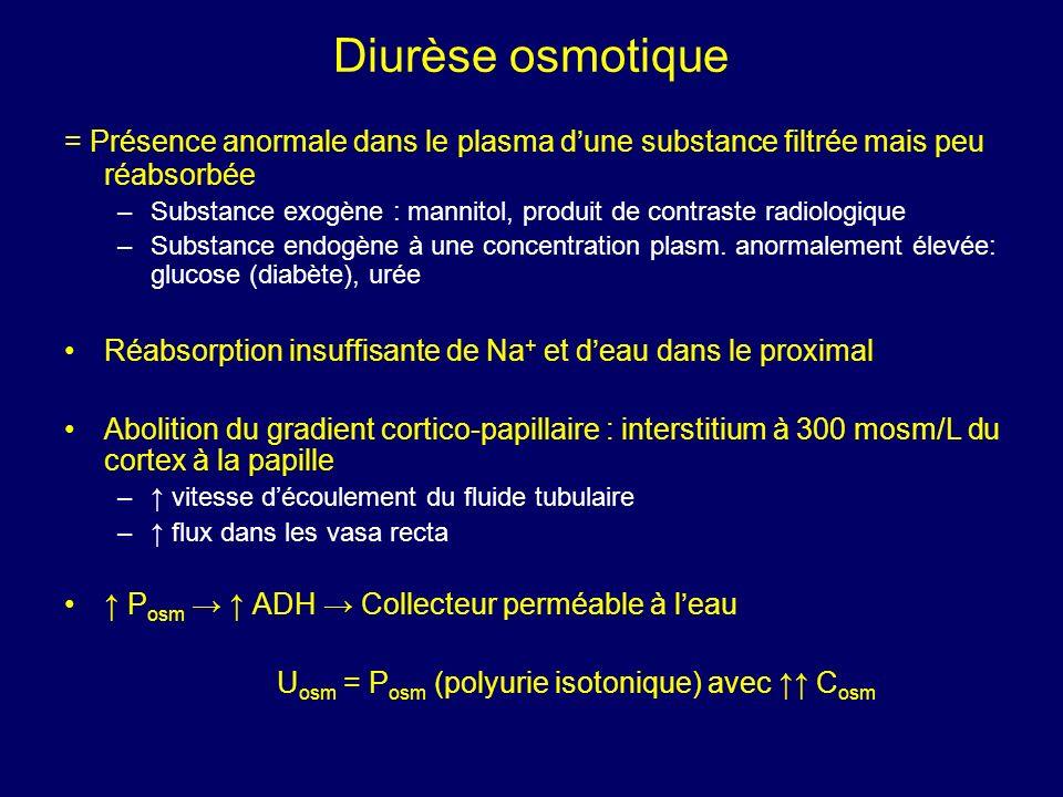Diurèse osmotique = Présence anormale dans le plasma dune substance filtrée mais peu réabsorbée –Substance exogène : mannitol, produit de contraste ra