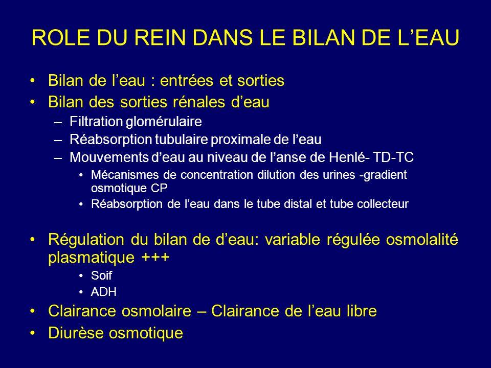 BILAN DE LEAU : ENTREES Apports endogènes : Eau doxydation lors du métabolisme des protides, glucides et lipides (~ 500 mL/j) Apports exogènes : Eau de boisson Eau contenue dans les aliments (1-3 L/j) REGULATION PAR LA SENSATION DE SOIF Dépend de laccès à leau Habitus