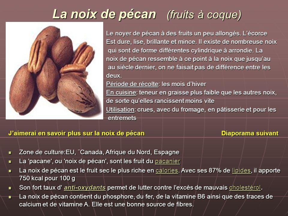 La noix de pécan (fruits à coque) Le noyer de pécan à des fruits un peu allongés.