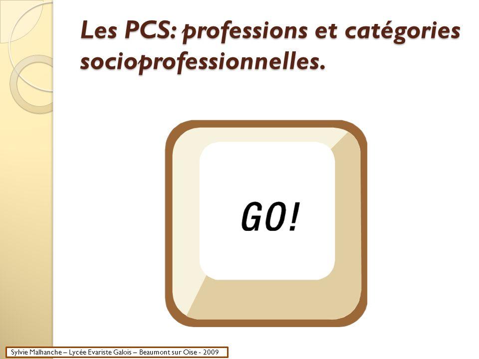 Les PCS: professions et catégories socioprofessionnelles. Sylvie Malhanche – Lycée Evariste Galois – Beaumont sur Oise - 2009