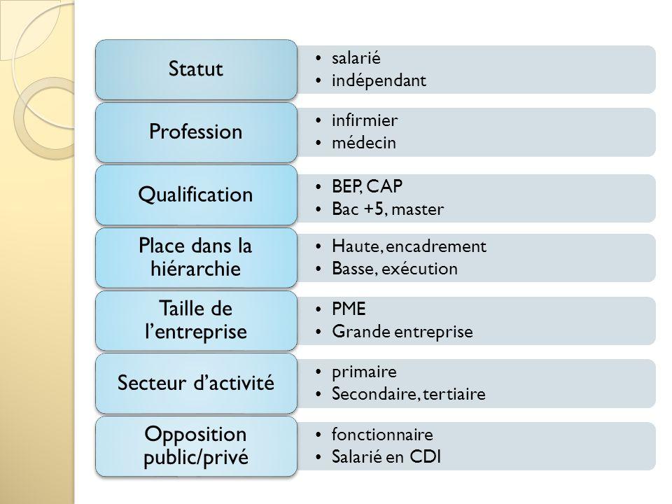salarié indépendant Statut infirmier médecin Profession BEP, CAP Bac +5, master Qualification Haute, encadrement Basse, exécution Place dans la hiérar