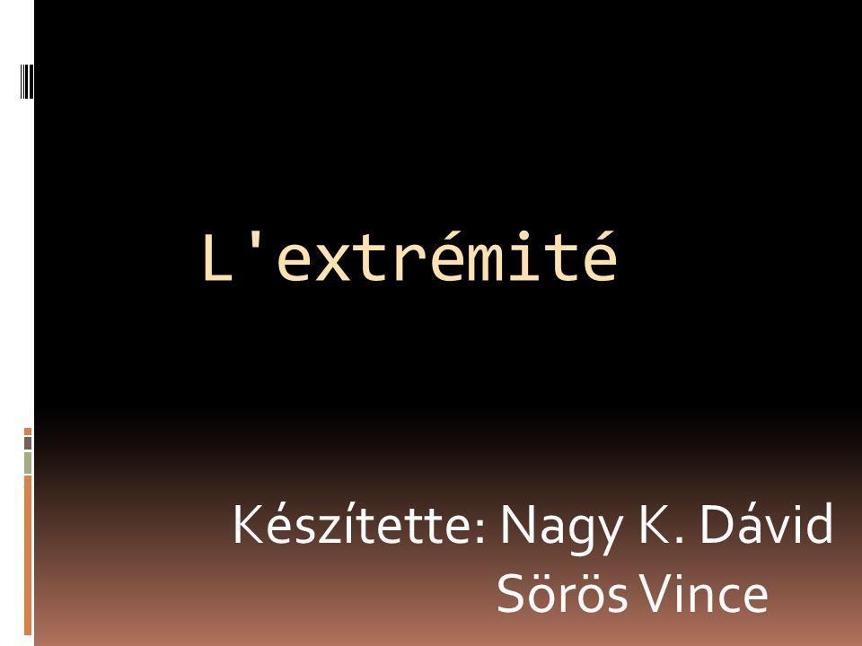 L extrémité Készítette: Nagy K. Dávid Sörös Vince