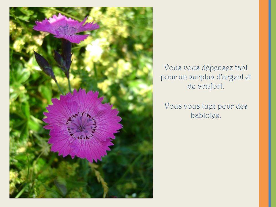 Présentation @frédérique juillet 2011 Et bonnes vacances .