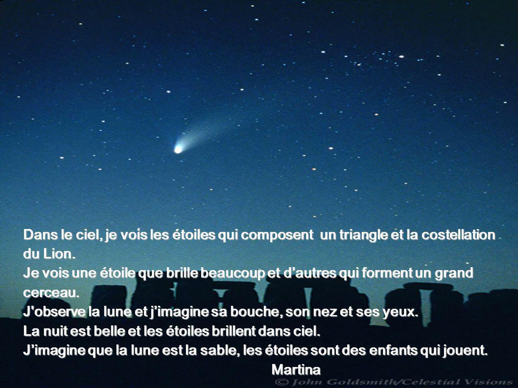 Dans le ciel, je vois les étoiles qui composent un triangle et la costellation du Lion. Je vois une étoile que brille beaucoup et dautres qui forment