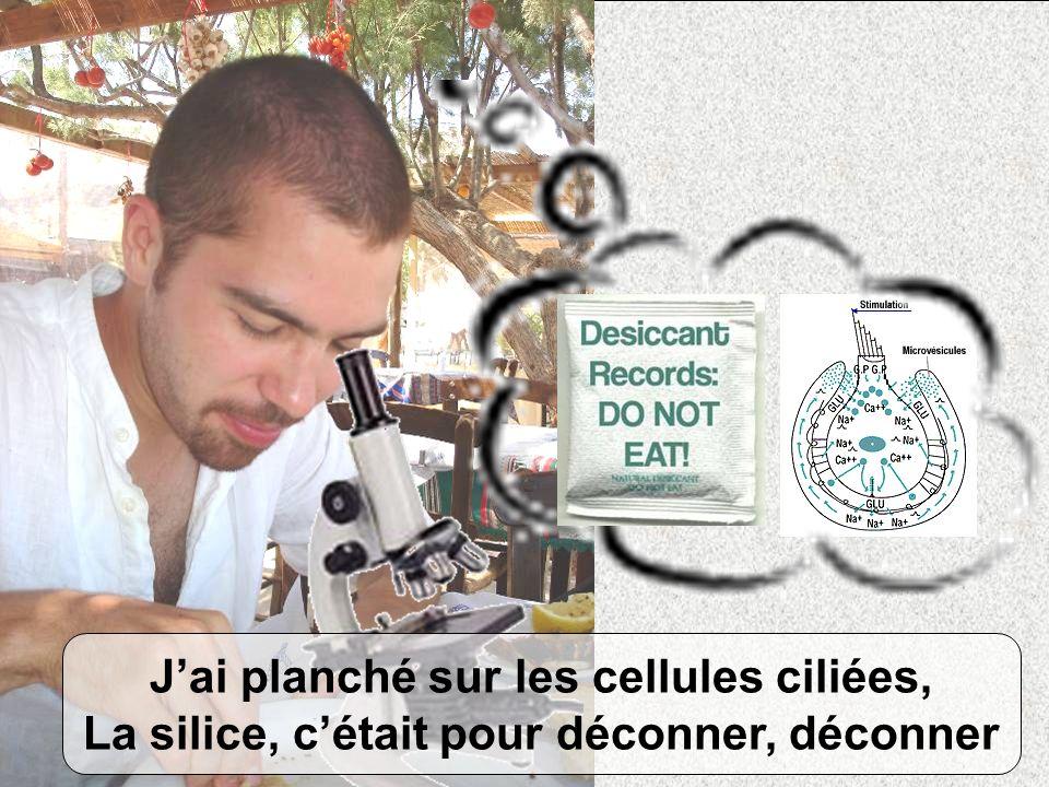 Jai planché sur les cellules ciliées, La silice, cétait pour déconner, déconner
